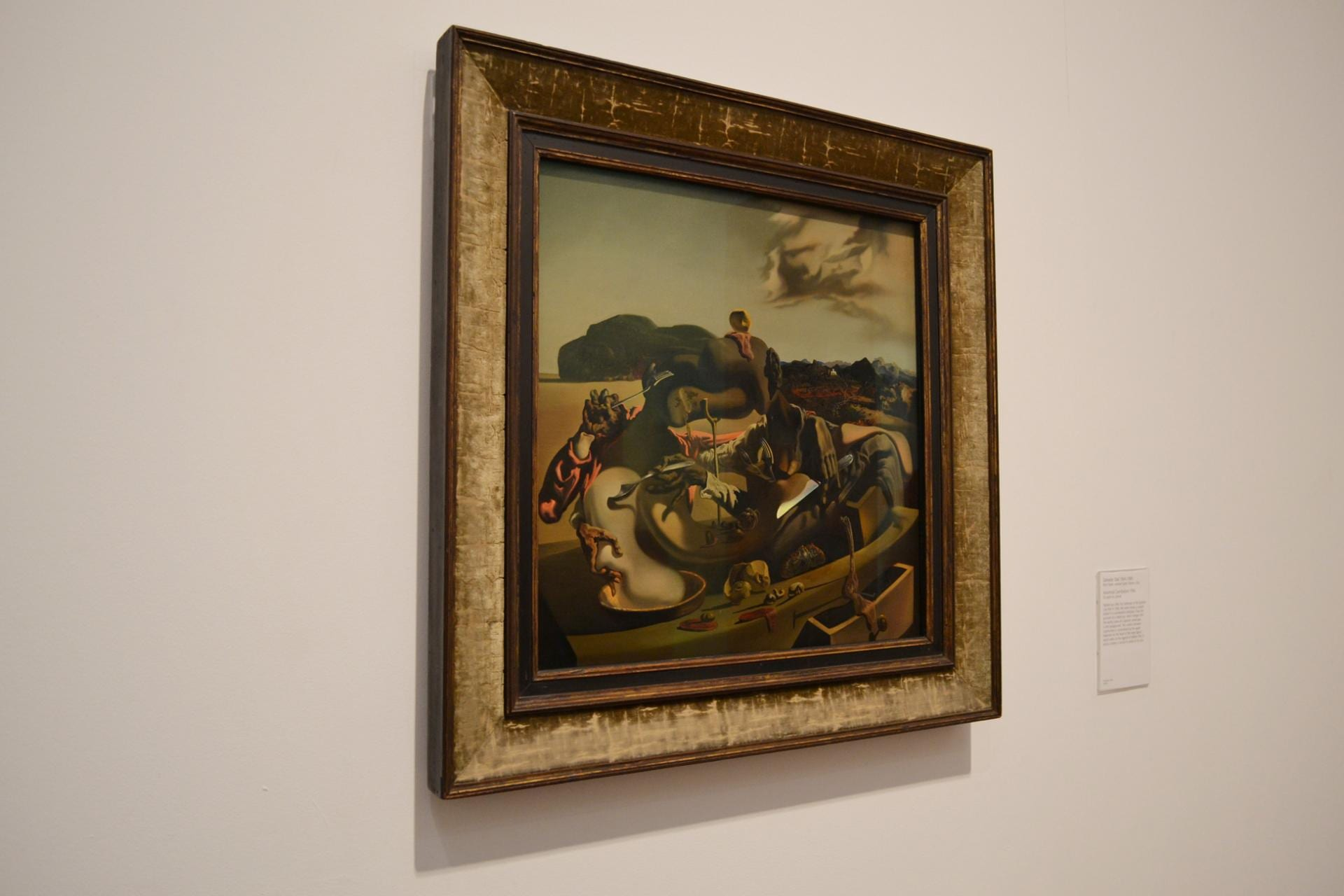 Tate Modern: Dalí