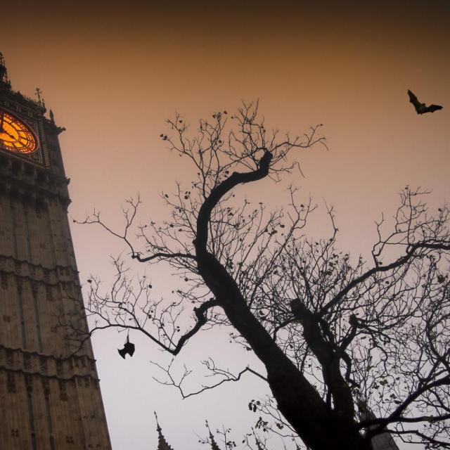 Halloween en Londres