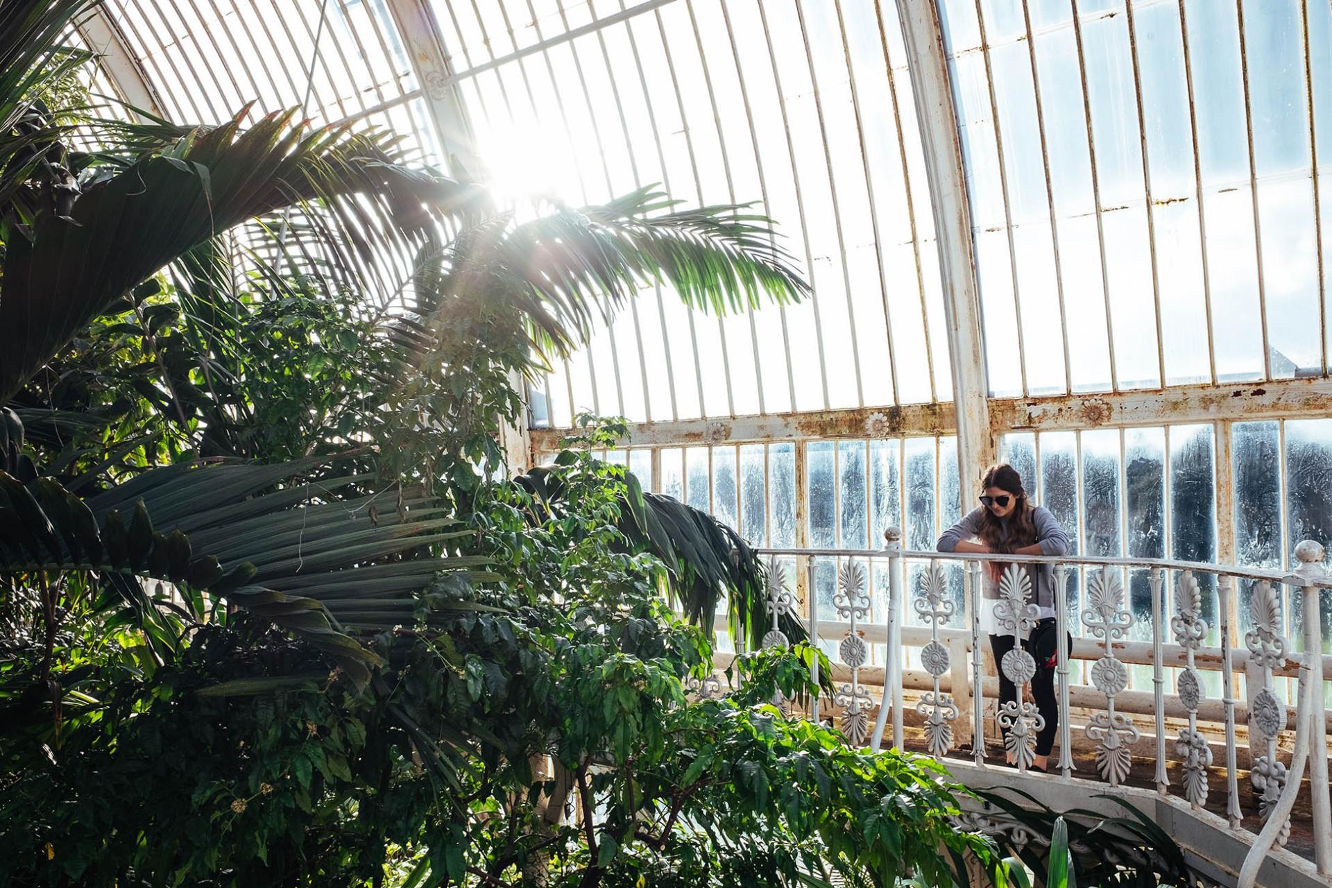 Jardines de Kew: Palm House