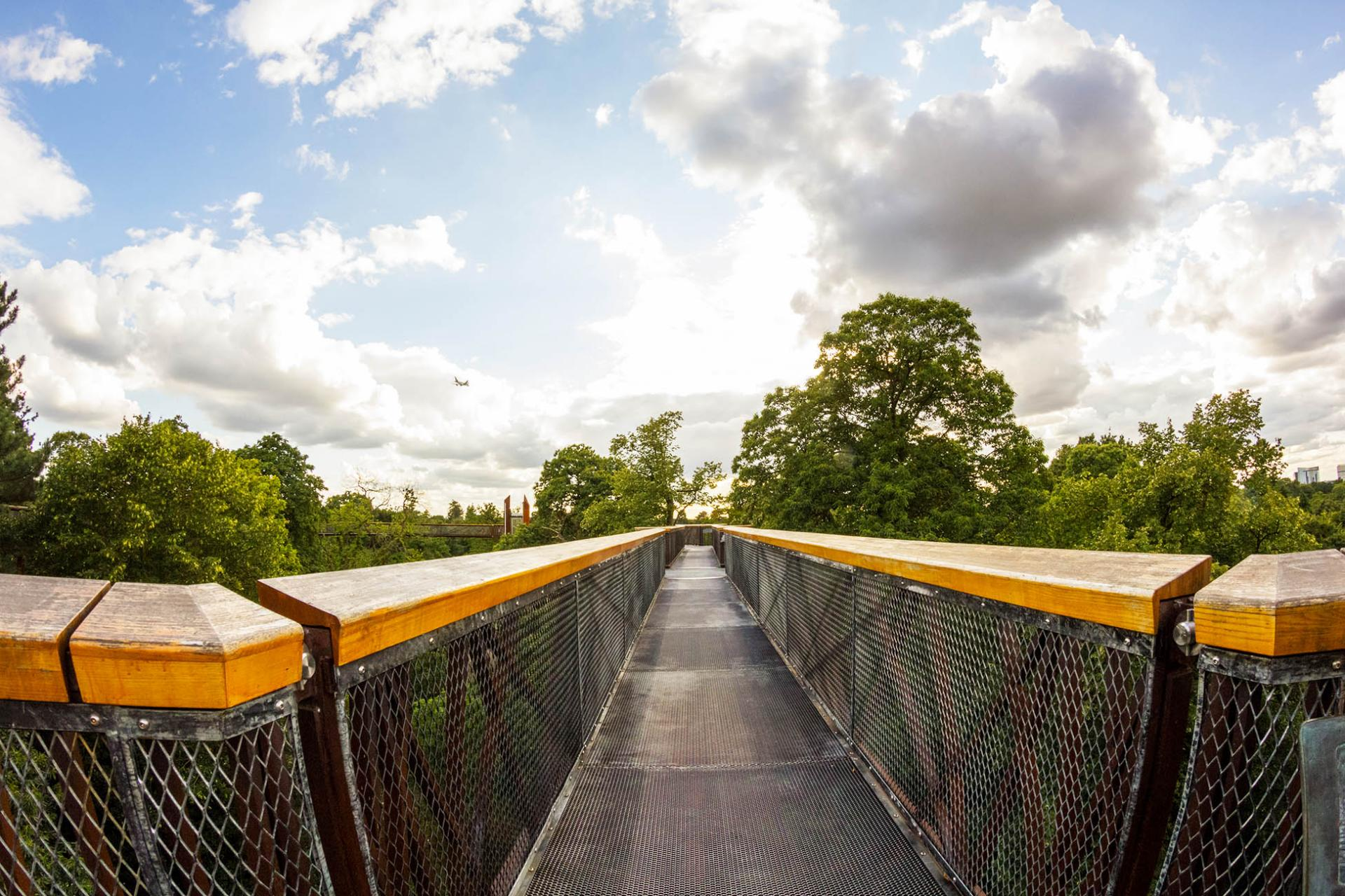 Jardin Botanico de Londres –plataformas elevadas