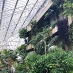 Barbican Conservatory – Un paraíso tropical en Londres